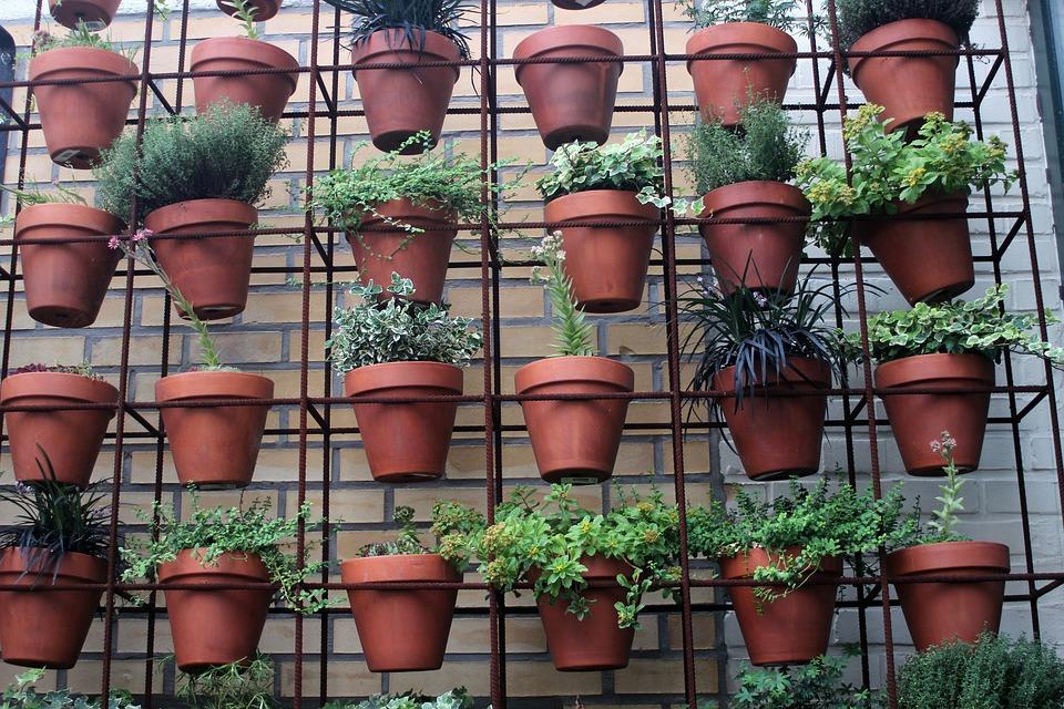 květináče u zdi
